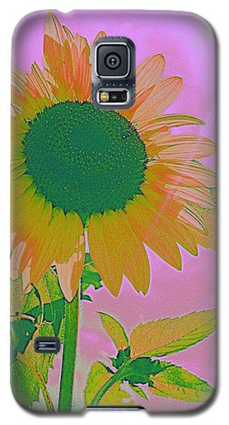 Autumn's Sunflower Pop Art Galaxy S5 Case
