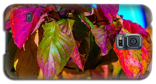 Autumns Wake Up Call Galaxy S5 Case