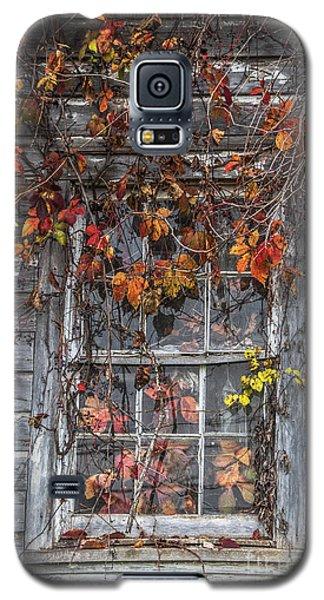 Autumn's Window Curtains Galaxy S5 Case