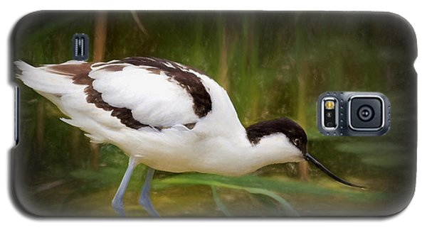 Avocet Galaxy S5 Case by Ian Merton
