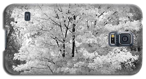 Awe Tumn Bw Galaxy S5 Case by Elizabeth Sullivan