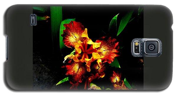 Awesome Iris Galaxy S5 Case