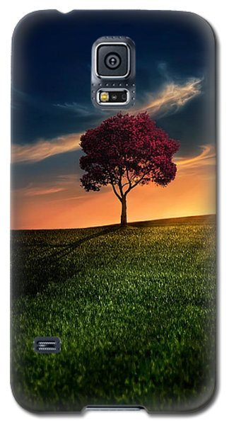 Sunset Galaxy S5 Case - Awesome Solitude by Bess Hamiti