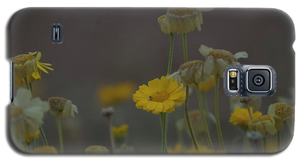 Galaxy S5 Case featuring the photograph Az Flowers by Rod Wiens