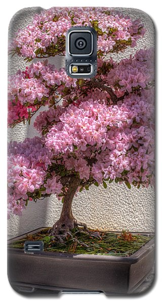 Azalea Bonsai Galaxy S5 Case