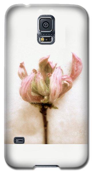 Galaxy S5 Case featuring the photograph Azalea Bud by Louise Kumpf