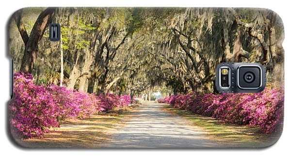 Galaxy S5 Case featuring the photograph azalea lined road in Spring by Bradford Martin
