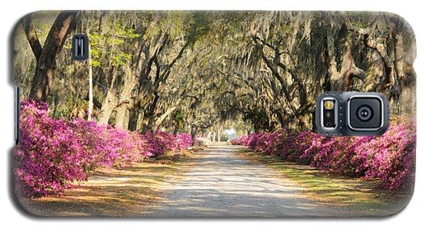azalea lined road in Spring Galaxy S5 Case by Bradford Martin