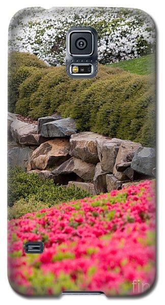Azaleas Galaxy S5 Case by Dan Carmichael