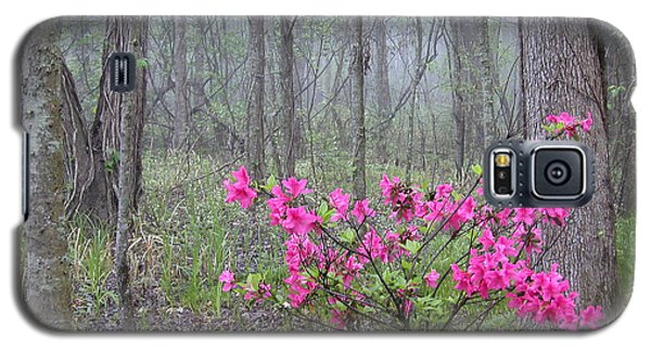 Azaleas In Fog Galaxy S5 Case