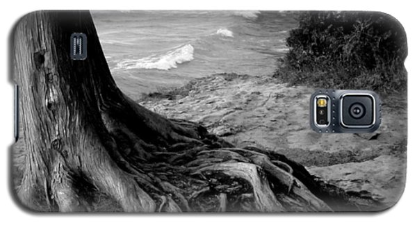B And W Cedar Roots At Cave Point Galaxy S5 Case