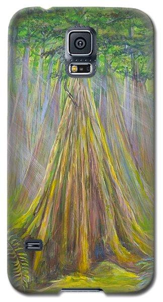 B C Cedars Galaxy S5 Case