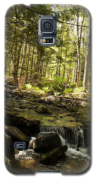 Babbling Battie Brook Galaxy S5 Case by Daniel Hebard