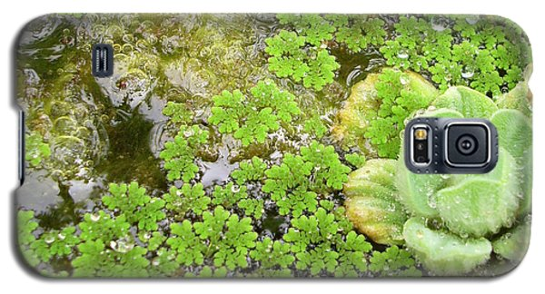 Babbling Brook Galaxy S5 Case by Ismael Cavazos