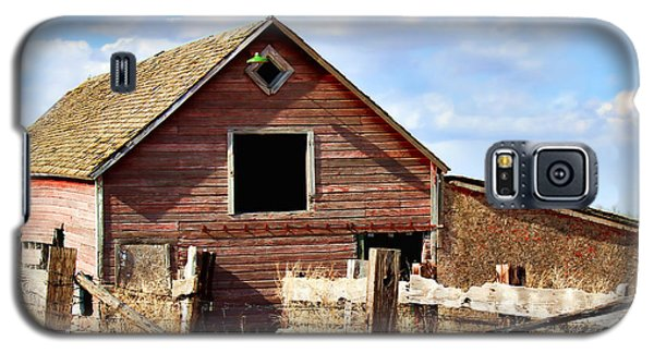 Galaxy S5 Case featuring the photograph Baby Barn by Sylvia Thornton