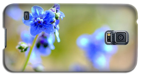 Galaxy S5 Case featuring the photograph Baby Blu by Martina  Rathgens