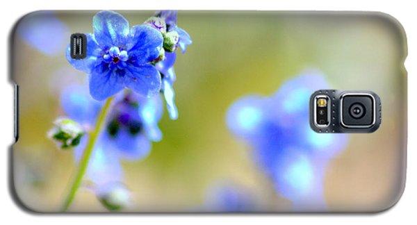 Baby Blu Galaxy S5 Case