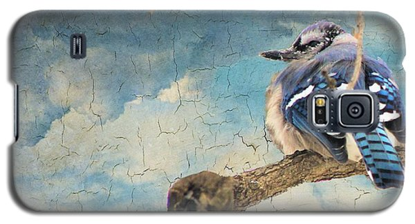 Baby Blue Jay In Winter Galaxy S5 Case by Janette Boyd
