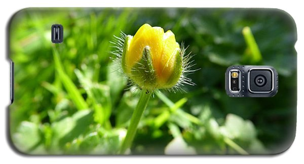 Galaxy S5 Case featuring the photograph Baby Buttercup by Laurie Tsemak