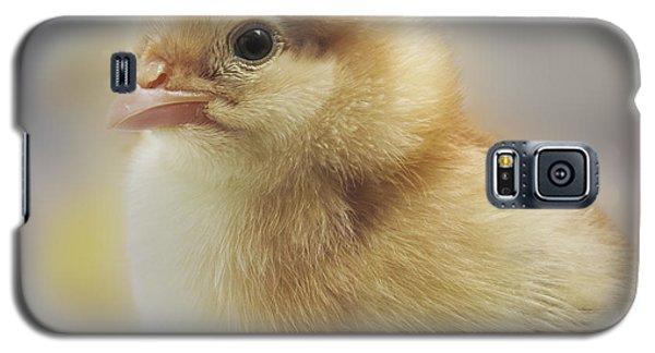Baby Chicken Galaxy S5 Case