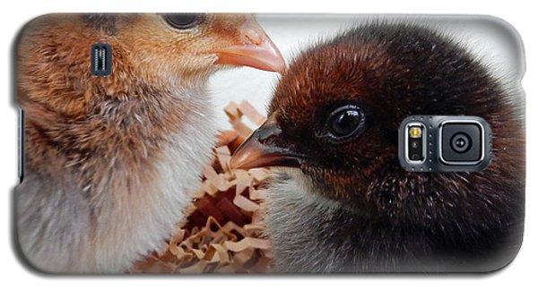 Baby Chicks Galaxy S5 Case