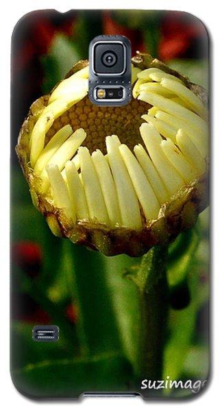 Baby Daisy Galaxy S5 Case