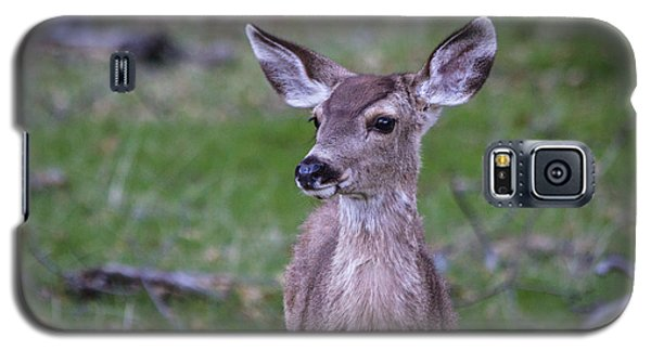 Baby Deer Galaxy S5 Case