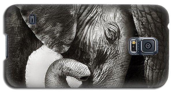 Baby Elephant Seeking Comfort Galaxy S5 Case