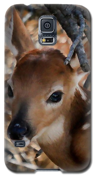Baby Face Fawn Galaxy S5 Case by Athena Mckinzie