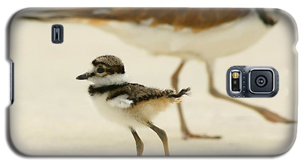 Baby Killdeer Galaxy S5 Case