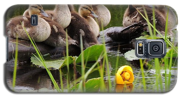 Baby Mallard Galaxy S5 Case by Karen Horn