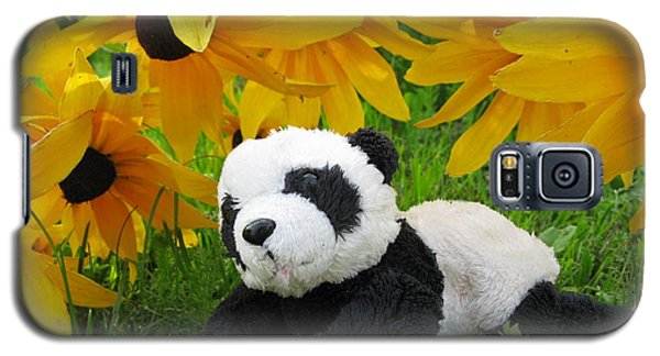 Baby Panda Under The Golden Sky Galaxy S5 Case by Ausra Huntington nee Paulauskaite