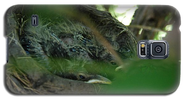 Galaxy S5 Case featuring the photograph Baby Robins Nesting by Ramona Whiteaker