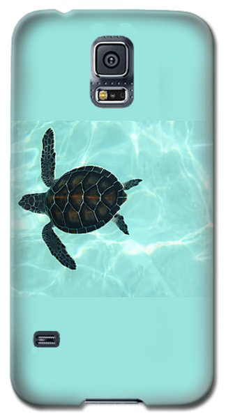 Baby Sea Turtle Galaxy S5 Case