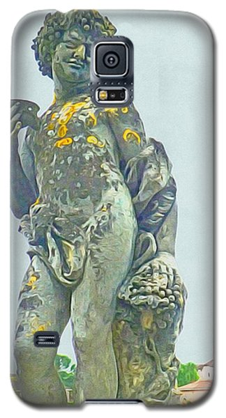 Galaxy S5 Case featuring the photograph Bacchus At The Bishops Palace by Susan Alvaro