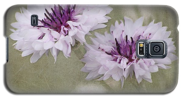Bachelor Buttons - Flowers Galaxy S5 Case