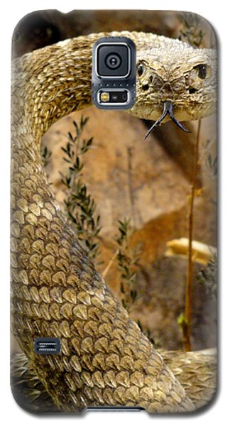 Galaxy S5 Case featuring the photograph Back Off by Mary Beth Landis
