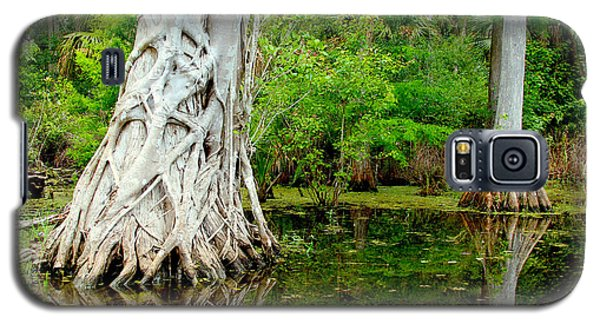 Catfish Galaxy S5 Case - Backcountry by Carey Chen