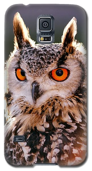 Owl Galaxy S5 Case - Backlit Eagle Owl by Roeselien Raimond