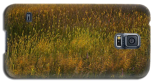 Galaxy S5 Case featuring the photograph Backlit Meadow Grasses by Marty Saccone