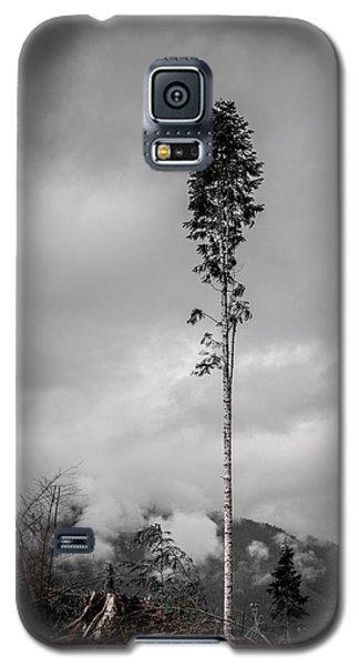 Lone Tree Landscape  Galaxy S5 Case