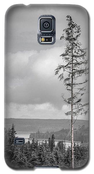 Tall Tree View Galaxy S5 Case