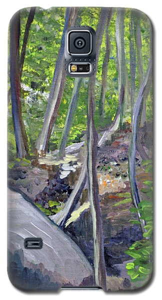 Backyard At Sussex 1 Galaxy S5 Case