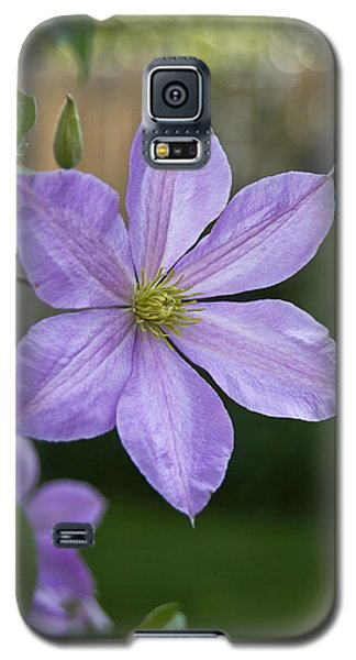 Backyard Clematis Galaxy S5 Case