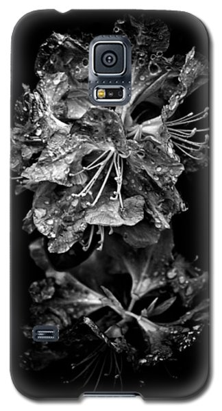 Galaxy S5 Case featuring the photograph Backyard Flowers In Black And White 1 After The Storm by Brian Carson
