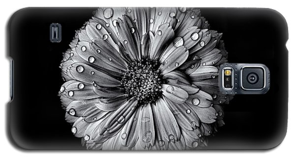 Galaxy S5 Case featuring the photograph Backyard Flowers In Black And White 10 After The Storm by Brian Carson