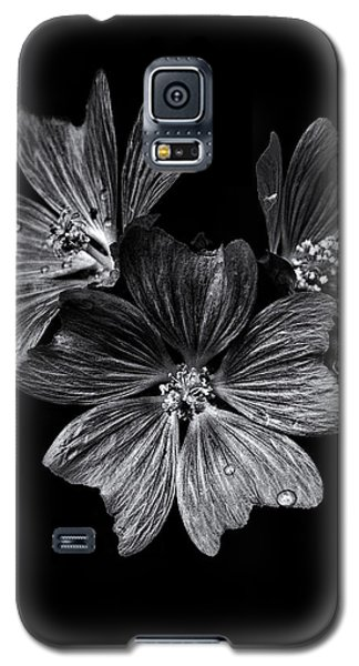 Backyard Flowers In Black And White 11 After The Storm Galaxy S5 Case by Brian Carson