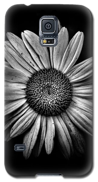 Backyard Flowers In Black And White 13 Galaxy S5 Case