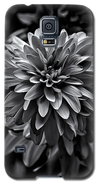 Galaxy S5 Case featuring the photograph Backyard Flowers In Black And White 15 by Brian Carson