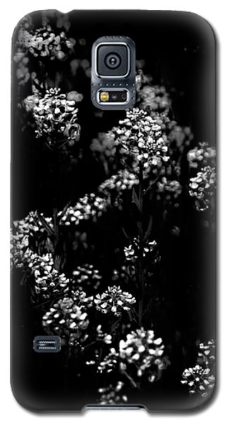 Backyard Flowers In Black And White 33 Galaxy S5 Case by Brian Carson